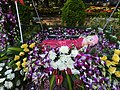 Flower show-14-cubbon park-bangalore-India.jpg