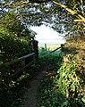 Footbridge on footpath - geograph.org.uk - 528088.jpg