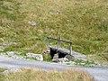 Footbridge over Maesnant - geograph.org.uk - 925858.jpg