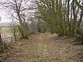 Footpath at Thurstonfield - geograph.org.uk - 118245.jpg