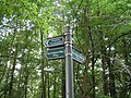 Footpath sign - geograph.org.uk - 235106.jpg