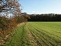 Footpath to Hadstock - geograph.org.uk - 1596577.jpg