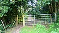 Footpath to Haslemere - geograph.org.uk - 962686.jpg