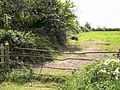 Footpath to Tetney - geograph.org.uk - 454711.jpg