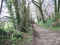Footpath towards Rockbourne - geograph.org.uk - 740270.jpg