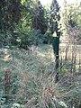 Forbach zwischen Quelle und Teich.jpg