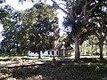 Fordlandia - Escritorio local et allée de manguiers.JPG