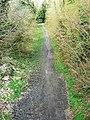 Former MandSWR trackbed, Marlborough - geograph.org.uk - 1225683.jpg