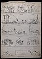 Fourteen scenes depicting skeletons in various situations. E Wellcome V0042212.jpg