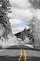 Fox Hollow Road, Eugene.jpg