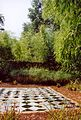 France Loir-et-Cher Festival jardins Chaumont-sur-Loire 2003 Lemna minor.jpg