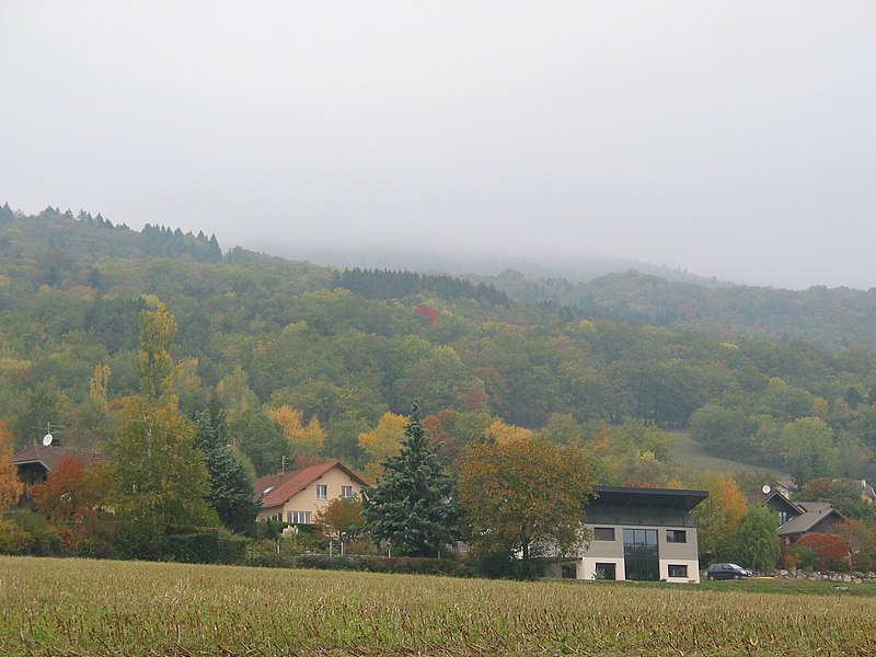 French Jura at Thoiry