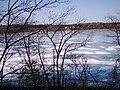 Fresh Pond, Cambridge, MA 09.jpg