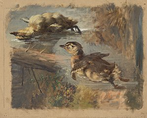 Study of Ducks on the Water I.