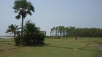 Barguna District - Image: Front view of Tengragiri Wildlife Sanctuary