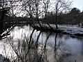 Frosty reflections, Camowen River - geograph.org.uk - 1150235.jpg
