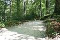 Fußweg Felsengarten Sanspareil 04082019 035.jpg