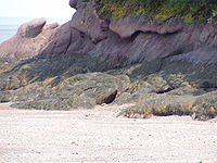 Fundy National Park of Canada 5.jpg