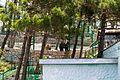 G. Gelendzhik, Krasnodarskiy kray, Russia - panoramio (38).jpg
