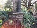 Gardenology.org-IMG 2722 hunt0903.jpg