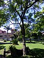 Gardens in Poliforum Mier y Pesado 03.jpg