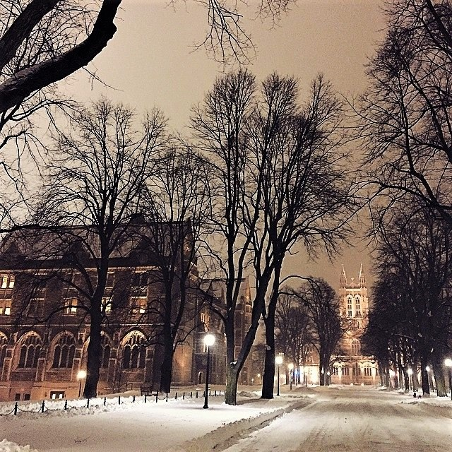 Gasson in Winter