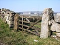 Gate, Two Bridges Road, Princetown - geograph.org.uk - 381221.jpg
