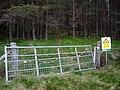 Gate into Plantation - geograph.org.uk - 850936.jpg