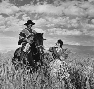 Huaso - Huaso in a Chilean wheat field, 1940