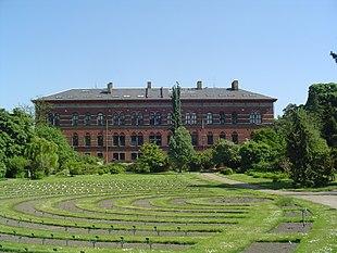 Il Museo Geologico