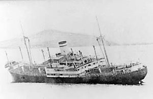 Niels Larsen Bruun - Image: German steamship Roda sinking