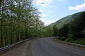 Gfp-pennsylvania-sinnemahoning-state-park-curving-roadway.jpg