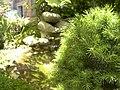 Giardino (DC) - panoramio.jpg