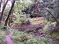 Glenbranter forestry walk, Bridge - geograph.org.uk - 235204.jpg