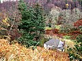 Glencovey cottage - geograph.org.uk - 1575693.jpg