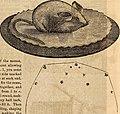 Godey's lady's book (1840) (14583416990).jpg