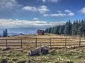 Golija - panoramio (15).jpg