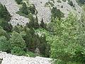 Gorges de Núria des del cremallera P1030260.JPG