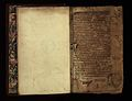 Greek Medical Texts Wellcome F0002810.jpg