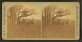 Group of people in the park, Concord, N.H, by Kimball, W. G. C. (Willis G. C.), 1843-1916.png