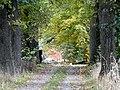 Gut Holtensen - panoramio (7).jpg