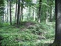 Hügelgrab1337.JPG