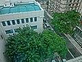 HK Ma Tau Wai 327 Prince Edward Road 聖德肋撒醫院 Saint Teresa's Hospital 九龍法國醫院 bedroom view trees n Lomond Road Feb-2014.JPG