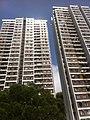 HK Pok Fu Lam 置富道 Chi Fu Road 置富花園 Chi Fu Fa Yuen SHK high-rises facade Mar-2012.jpg