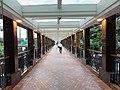 HK WCN 灣仔北 Wan Chai North 中環廣場 Central Plaza 行人天橋 footbridge to 菲林明道 Fleming Road July 2020 SS2 02.jpg