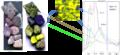 HSI LWIR stones.png