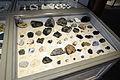 Harvard Museum of Natural History (DerHexer) 2012-07-20 11.jpg