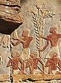 Hatschepsut-Tempel-12-Expedition nach Punt-1982-gje.jpg