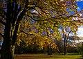 Helsingborg 2012-11-04 (8264276999).jpg