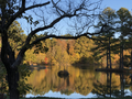 Herb Parsons Lake in Autumn.png